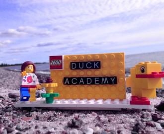 duck-academy